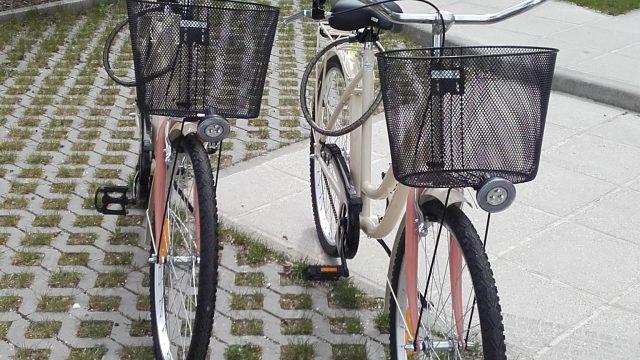 Free bike rental